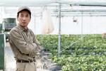 いちご栽培の知識・技術を後継に伝えていきたい